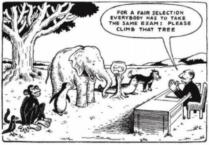 for-a-fair-selection-everybody-has-to-take-the-same-exam-please-climb-that-tree (2) copy
